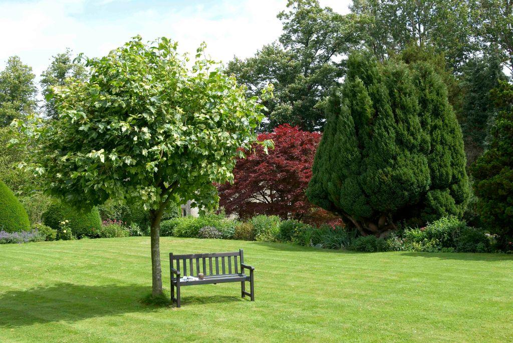vivat-shipton-court-garden-1-077