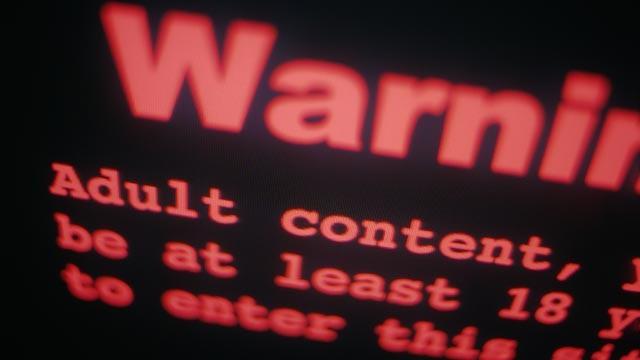 6f826_gty_computer_porn_mw_110707_wg